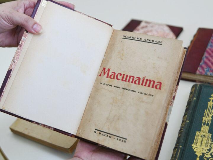 resumo do livro macunaíma